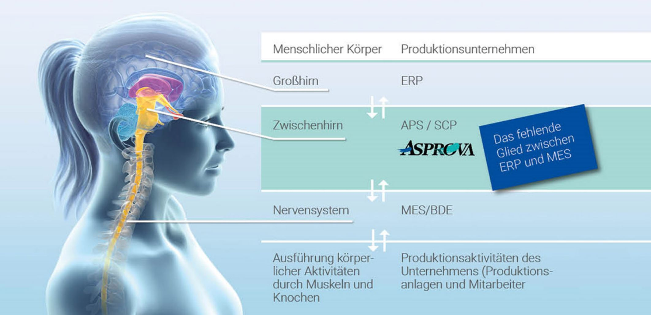 Produktionsplanung mit APS-Software